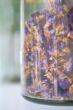 Trockene Blumen in der Glasflasche. Stockfoto