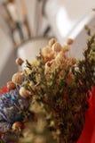 Trockene Blumen und Malereibürsten Stockbilder