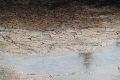 Trockene Brüche des Bodens stockbilder