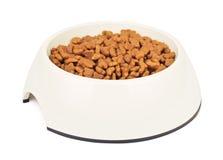 Trockene Cat Food In White Bowl Stockbilder
