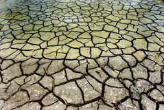 Trockene Erde Stockfotografie