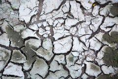 Trockene Erde Stockfoto