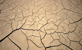 Trockene Erde Lizenzfreies Stockfoto