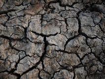 Trockene Erde in einer Dürre Lizenzfreies Stockbild