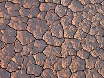 Trockene Erde mit Struktur Lizenzfreie Stockfotografie