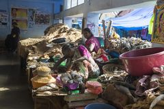 Trockene Fische im Markt Lizenzfreie Stockfotos