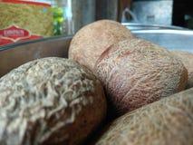 Trockene Frucht der Palme stockfoto