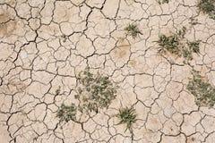 Trockene gebrochene Erdoberfläche Stockfotos