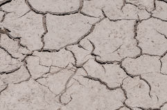 Trockene gebrochene geschädigte Grundbeschaffenheit Stockfotos