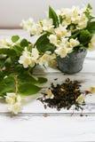 Trockene grüne Teeblätter des Jasmins mit Jasmin blüht auf weißem Hintergrund Stockbild