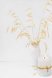 Trockene Haferzweige in brennender Kerze des keramischen Vase auf weißem Hintergrund, angeredetes Bild für Social Media, Modell Lizenzfreies Stockfoto