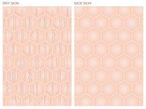 Trockene Haut, Nizza Hautbeschaffenheit, Lizenzfreie Stockfotos