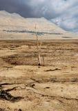 Trockene Küstenlinie des Toten Meers Lizenzfreie Stockfotografie