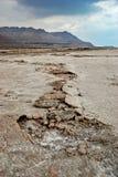 Trockene Küstenlinie des Toten Meers Stockfotografie
