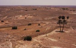 Trockene Landschaft stockbilder
