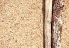 Trockene Niederlassungen auf dem Sand Stockbild