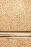 Trockene Niederlassungen auf dem Sand Lizenzfreies Stockfoto