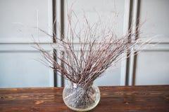 Trockene Niederlassungen in einem transparenten Vase auf einem Holztisch, grauer Hintergrund stockbilder