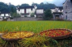 Trockene Paprikas und chinesisches Gebäude Stockfotos