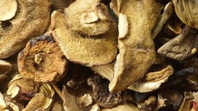 Trockene Pilze auf Holzoberfläche stock video footage