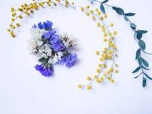 Trockene purpurrote, weiße und gelbe Blumen mit trockenen Eukalyptusblättern für floristics stockfoto