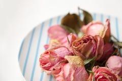 Trockene rosa Rosen der schönen zarten traurigen Krise auf einer blauen und weißen Platte Lizenzfreies Stockfoto
