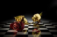Trockene Rose stockbilder
