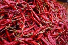 Trockene rote Paprikas benutzt als Gewürz Lizenzfreies Stockfoto