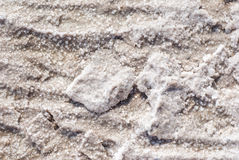 Trockene Salzseeunterseite voll der Beschaffenheit Lizenzfreies Stockfoto