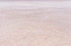 Trockene Salzseeunterseite voll der Beschaffenheit Stockfoto