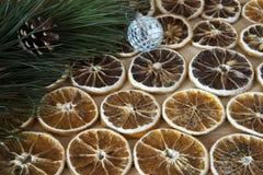 Trockene Scheiben des Zitronen- und Kiefernzweigs Stockfoto