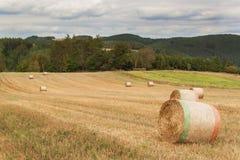Trockene Strohpakete auf einem Gebiet in der Tschechischen Republik Landwirtschaftliche Landschaft Bewölkter Tag Lizenzfreies Stockfoto