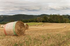 Trockene Strohpakete auf einem Gebiet in der Tschechischen Republik Landwirtschaftliche Landschaft Bewölkter Tag Stockfotografie