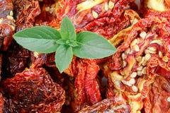 Trockene Tomaten und Basilikum im Detail Stockbilder