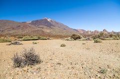 Trockene und steinige Landschaft des Kessels mit Ansicht über Vulkan Teide Lizenzfreie Stockfotografie