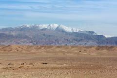 Trockene Wüste und Snowy-Berge stockfoto