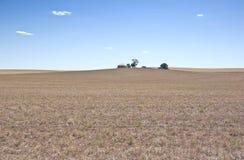 Trockener Bauernhof während der Dürre Stockfotos