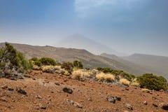Trockener Bereich Nationalparks Teide mit Teide-Berg im Hintergrund Lizenzfreies Stockbild