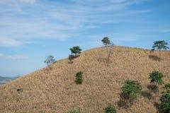 Trockener Berg mit Hintergrund des blauen Himmels Lizenzfreie Stockbilder