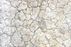 Trockener Boden Stockfoto