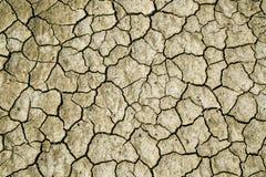 Trockener Boden Abstrat Lizenzfreie Stockfotos