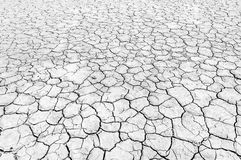 Trockener Boden in der Wüste Stockfoto