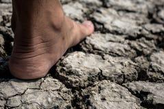 Trockener Boden des Fußes Stockfotos