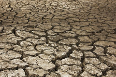 Trockener Boden trocken lizenzfreies stockfoto