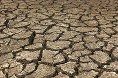 Trockener Boden trocken auf einer Sommersaison lizenzfreies stockbild