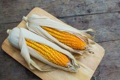 Trockener brauner Mais Stockbilder