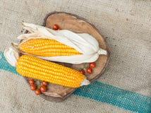 Trockener brauner Mais Stockbild