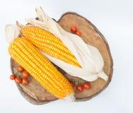 Trockener brauner Mais Lizenzfreie Stockfotos