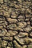 Trockener gebrochener Boden Stockfotografie