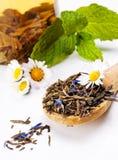 Trockener grüner Tee Lizenzfreies Stockfoto